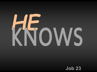 job-23