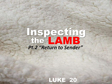 luke-20-inspecting-the-lamb-pt2