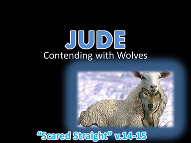 jude-contending-with-wolves-pt12