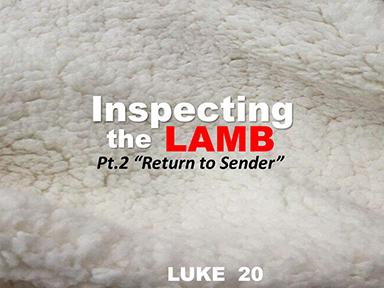 luke-20-inspecting-the-lamb-pt2